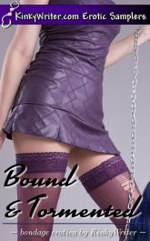 Book Cover for Bound & Tormented (by KinkyWriter)