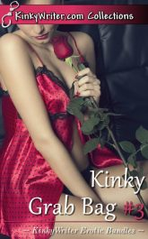 Book Cover for Kinky Grab Bag #3 (by KinkyWriter)