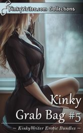 Book Cover for Kinky Grab Bag #5 (by KinkyWriter)