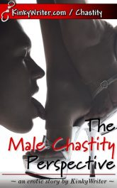 Book Cover for The Male Chastity Perspective (by KinkyWriter)
