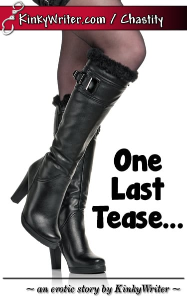 Book Cover for One Last Tease... (by KinkyWriter)