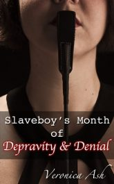 Book Cover for Slaveboy's Month of Depravity & Denial (by Veronica Ash)